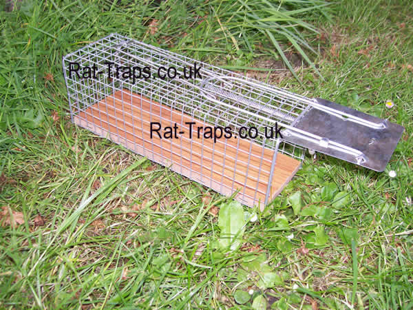 single catch rat trap small